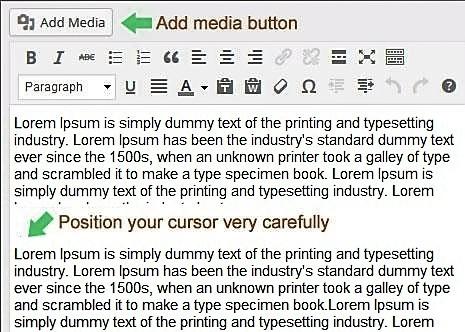 WordPress Simplified – Basic User Guide